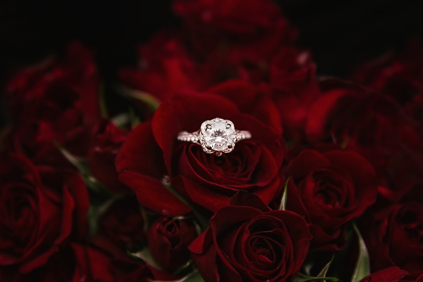 wedding jewelry lansdale